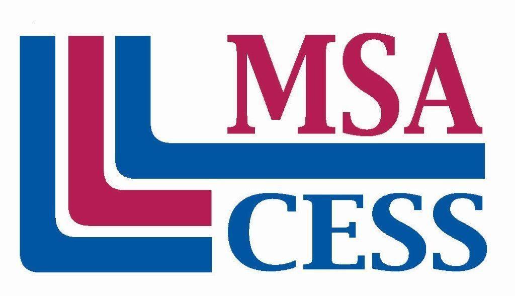 MSACESS_logo